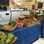 Long Meadow Ranch organic produce