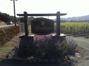 Baldacci Family Winery