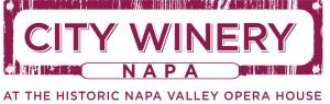 cw_NAPA-Logo__Burgundy-1-300x95