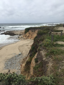 Rugged Pescadero Beach