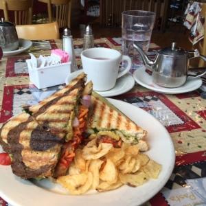 Scovie's Gourmet Grilled Tree Hugger panini